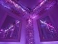 indoor24